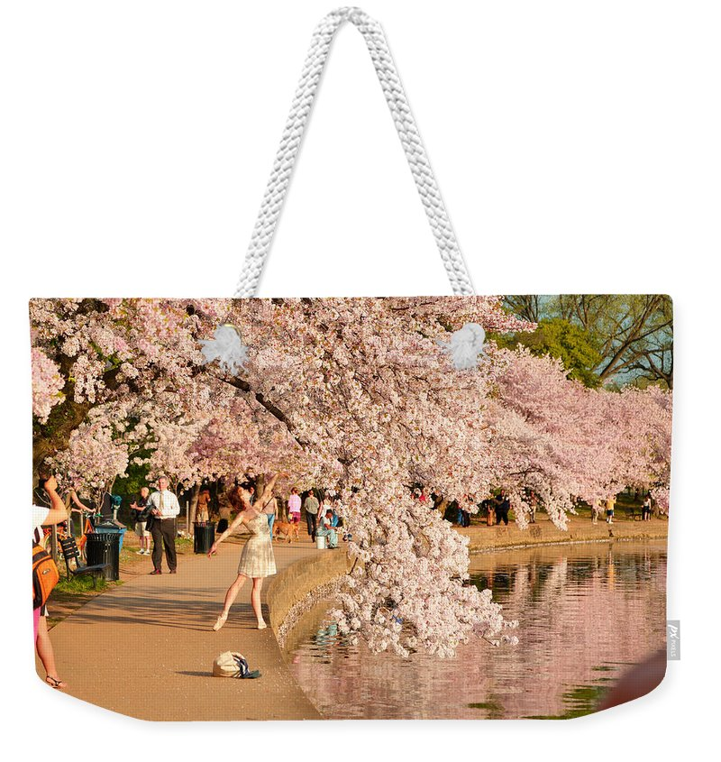 Architectural Weekender Tote Bag featuring the photograph Cherry Blossoms 2013 - 076 by Metro DC Photography