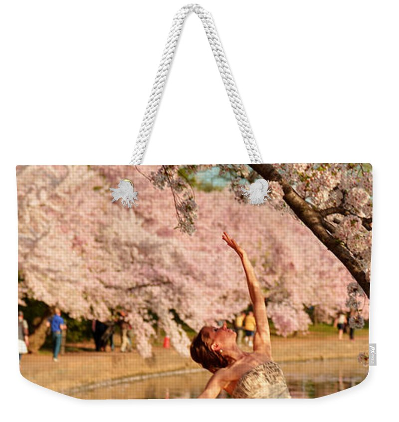 Architectural Weekender Tote Bag featuring the photograph Cherry Blossoms 2013 - 077 by Metro DC Photography
