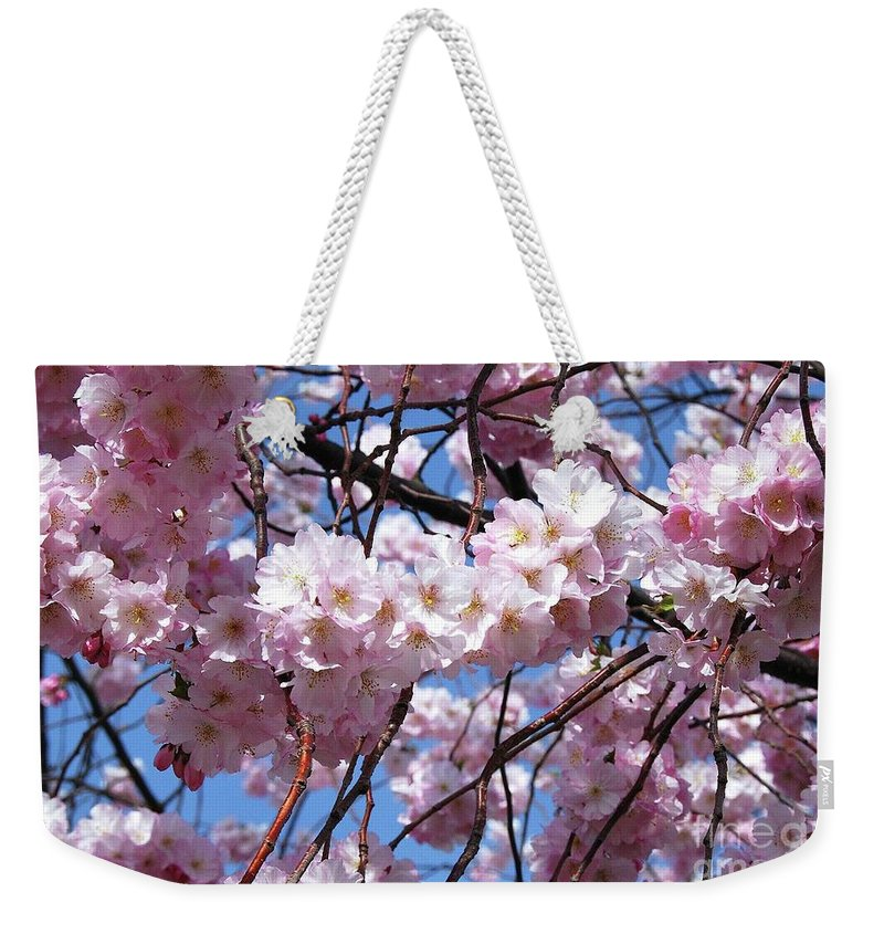 Cherry Blossoms Weekender Tote Bag featuring the photograph Cherry Blossom Trees Of Branch Brook Park 3 by Allen Beatty