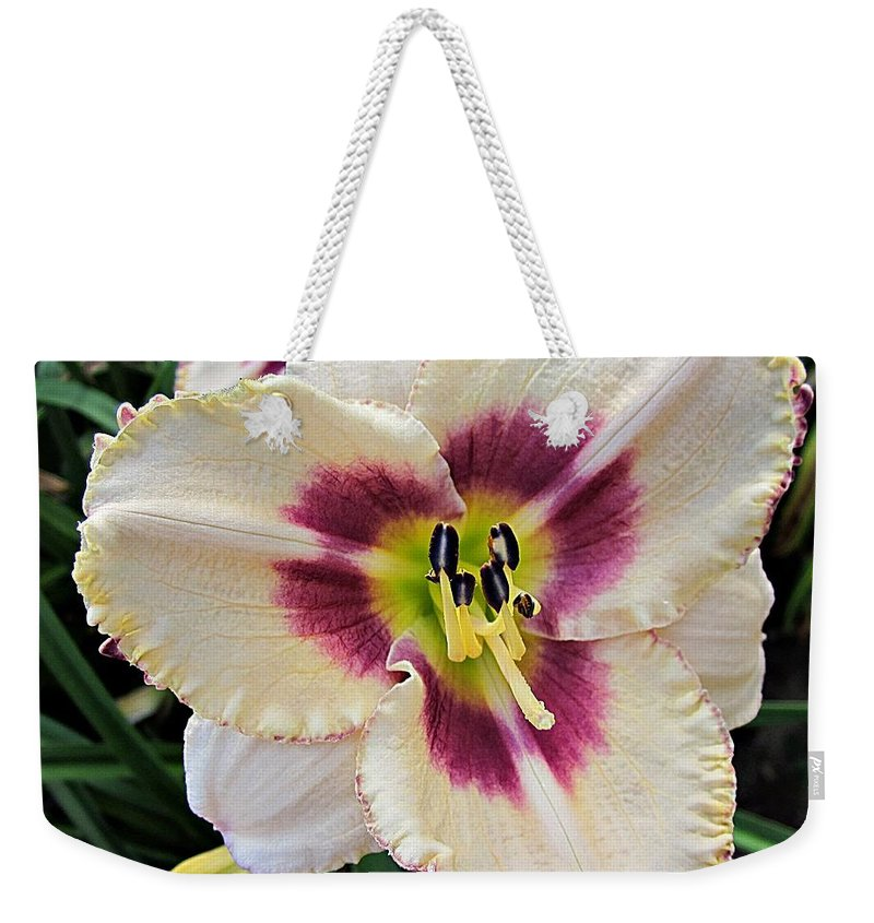 Daylily Weekender Tote Bag featuring the photograph Cherryberry Daylily by MTBobbins Photography