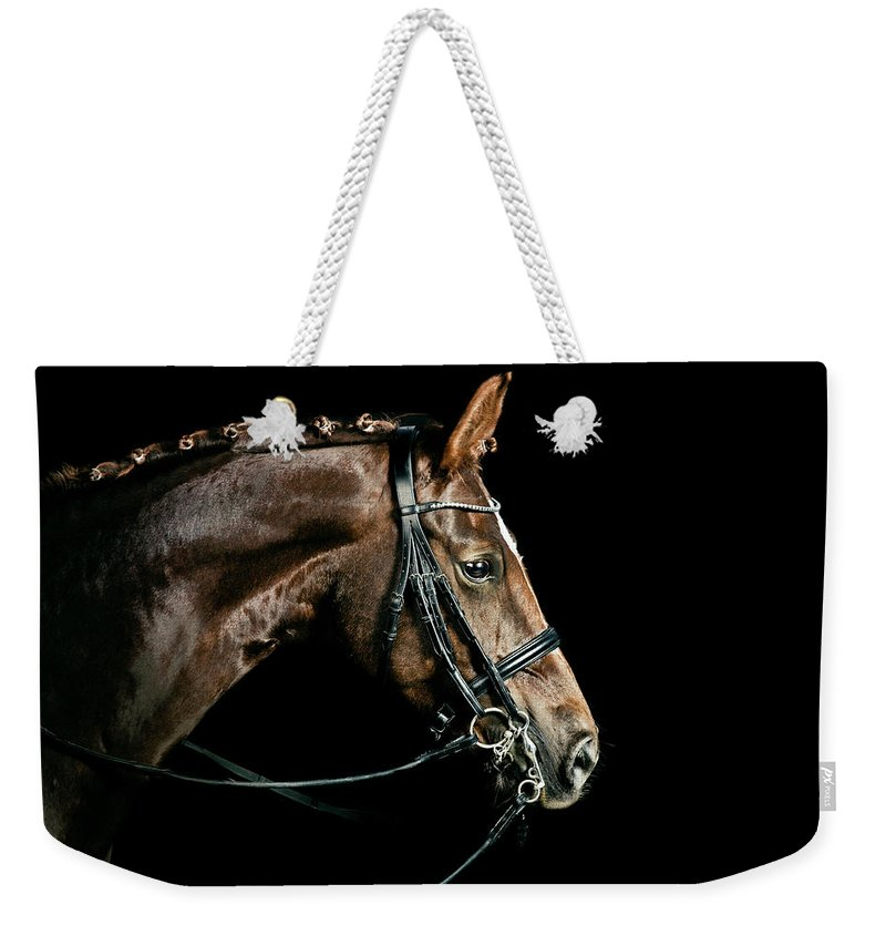 Horse Weekender Tote Bag featuring the photograph Chestnut Dressage Horse Groomed For A by Anja Hild