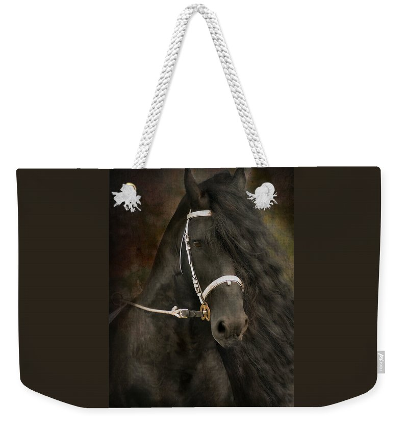 Friesian Weekender Tote Bag featuring the photograph Chiaroscuro by Fran J Scott