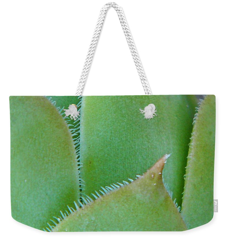 Hens-and-chicks Weekender Tote Bag featuring the photograph Chick by Chris Berry