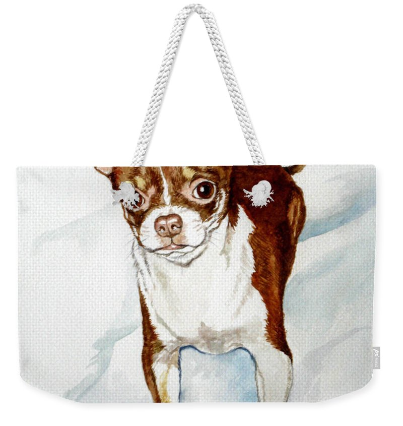 Dog Weekender Tote Bag featuring the painting Chihuahua White Chocolate Color. by Christopher Shellhammer