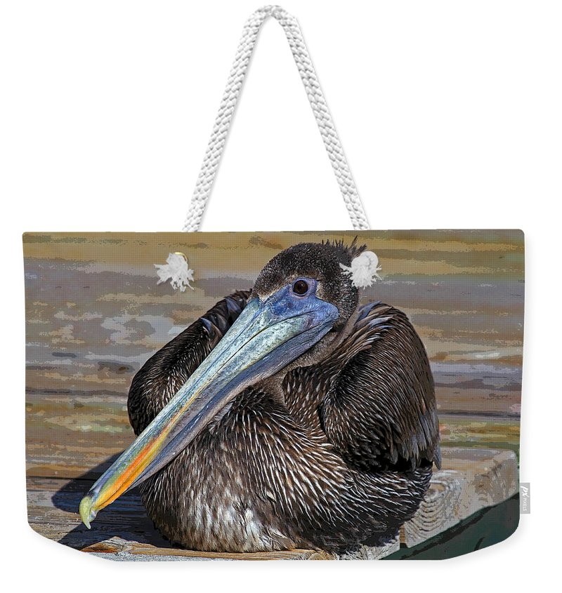 Animal Weekender Tote Bag featuring the photograph Chillin by HH Photography of Florida