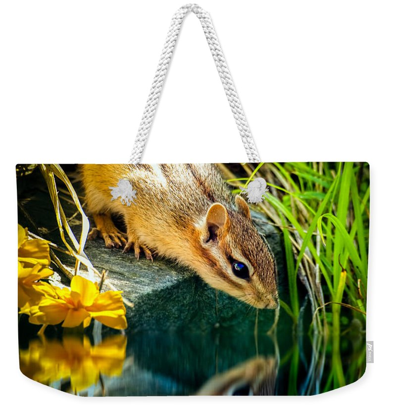 Chipmunk Weekender Tote Bag featuring the photograph Chipmunk Reflection by Bob Orsillo