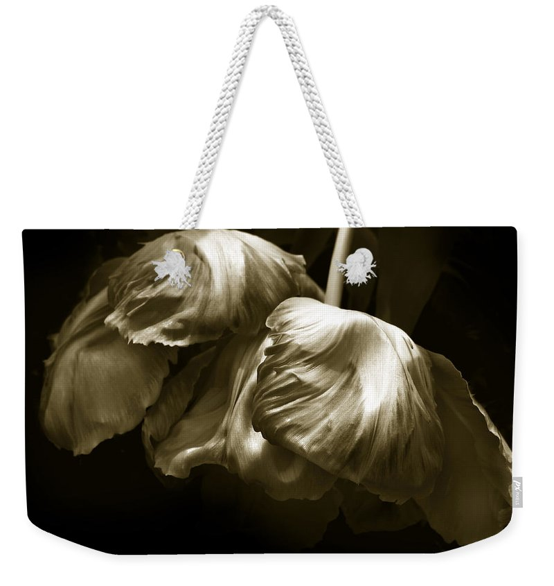 Flowers Weekender Tote Bag featuring the photograph Chocolate Kisses by Jessica Jenney
