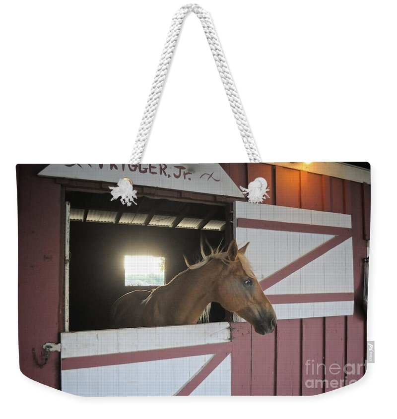 Trigger Weekender Tote Bag featuring the photograph Choicey by Bridgette Gomes