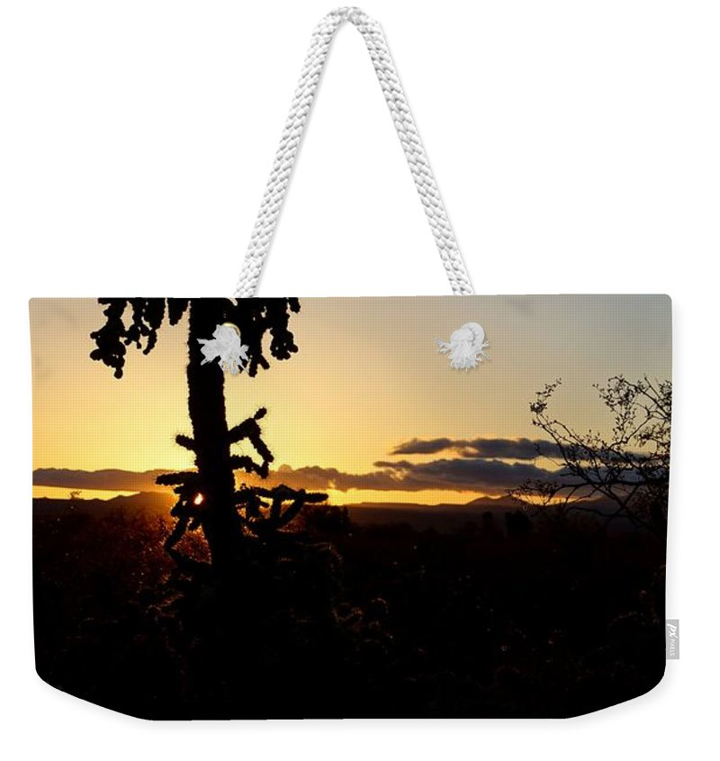 America Weekender Tote Bag featuring the photograph Cholla Cactus Sunset by Kerri Mortenson
