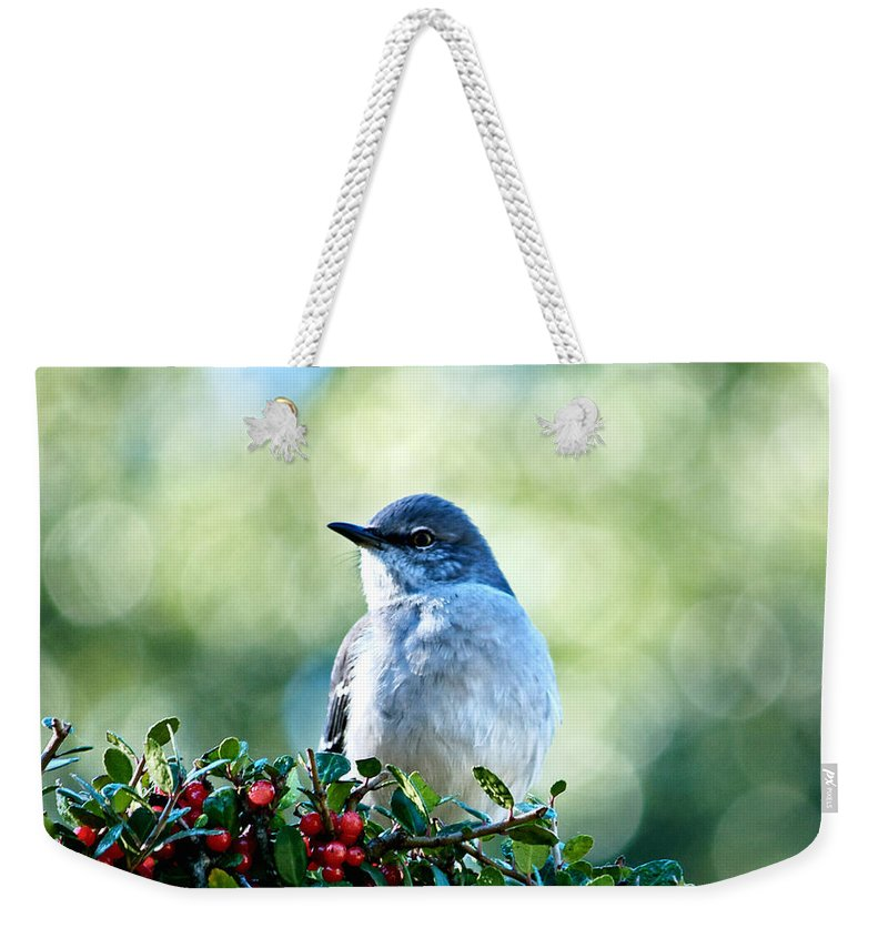 Abstract Weekender Tote Bag featuring the photograph Christmas Mockingbird by Andrew Chianese