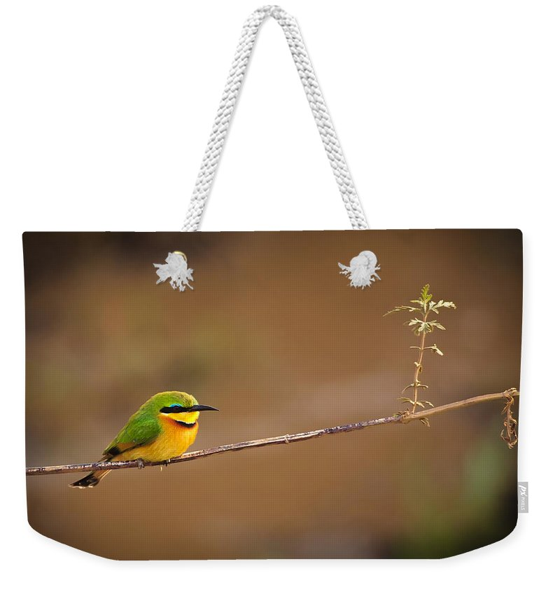 3scape Photos Weekender Tote Bag featuring the photograph Cinnamon-chested Bee-eater by Adam Romanowicz