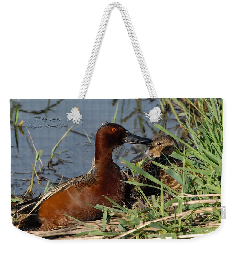 Beach Weekender Tote Bag featuring the photograph Cinnamon Teal by Safe Haven Photography Northwest