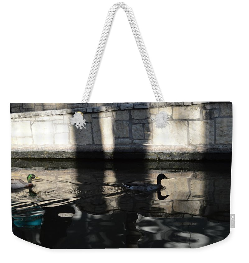 Architecture Weekender Tote Bag featuring the photograph City Ducks by Shawn Marlow
