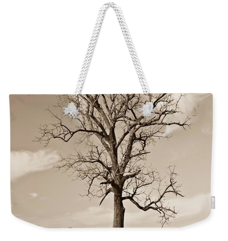 Cannon Weekender Tote Bag featuring the photograph Civil War Nostalgia by Douglas Barnett