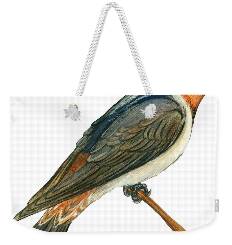 No People; Square Image; Side View; Full Length; White Background; One Animal; Wildlife; Close Up; Illustration And Painting; Zoology; Bird; Branch; Wing; Feather; Perching; Cliff Swallow; Beak; Petrochelidon Pyrrhonota Albifrons Weekender Tote Bag featuring the drawing Cliff Swallow by Anonymous