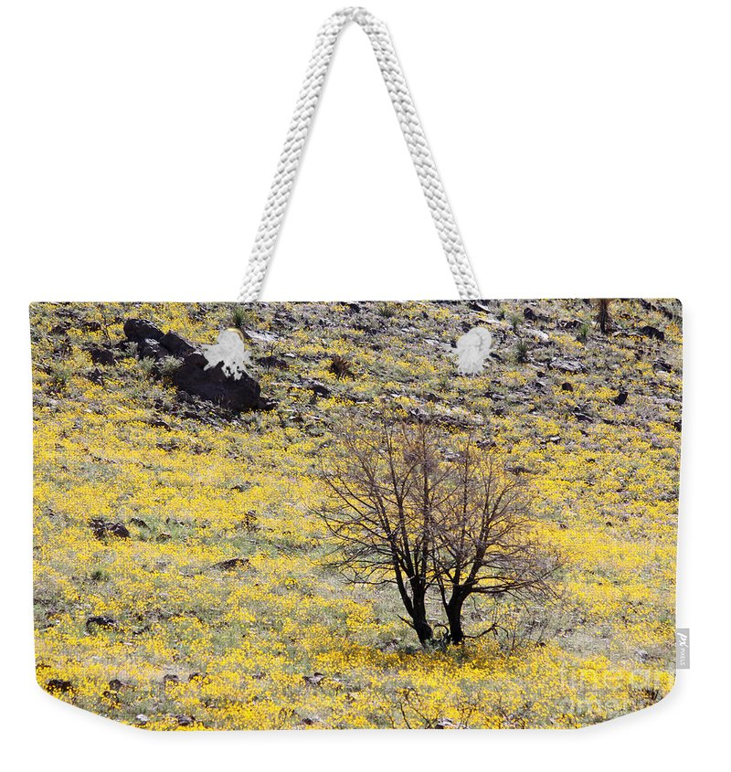 Photograph Weekender Tote Bag featuring the photograph Cloaked In Yellow by Alycia Christine
