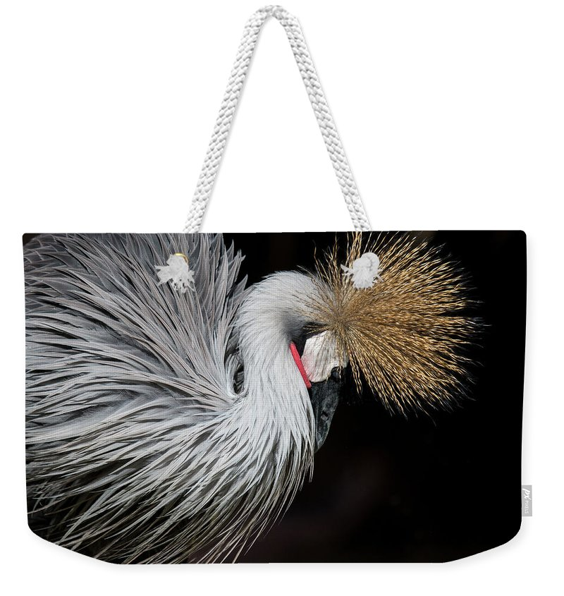 Tranquility Weekender Tote Bag featuring the photograph Close Portrait Of A Grey Crowned Crane by © Santiago Urquijo