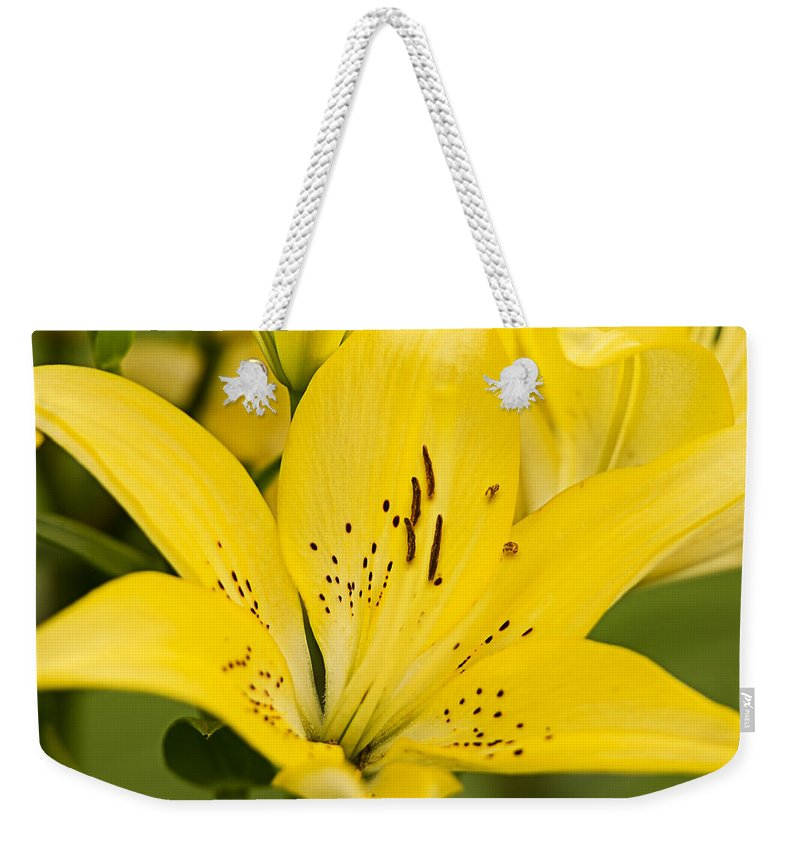 Beauty Weekender Tote Bag featuring the pyrography Close Up Beauty by Shirley Tinkham