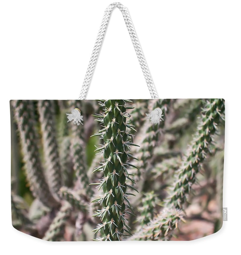 Background Weekender Tote Bag featuring the photograph Close Up Of Long Cactus With Long Thorns by Alex Grichenko