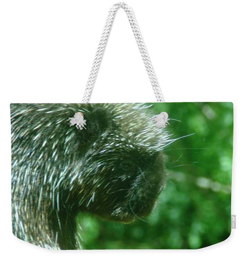 Porcupine Weekender Tote Bag featuring the photograph Close Up Of Mr Porcipine by Jeff Swan