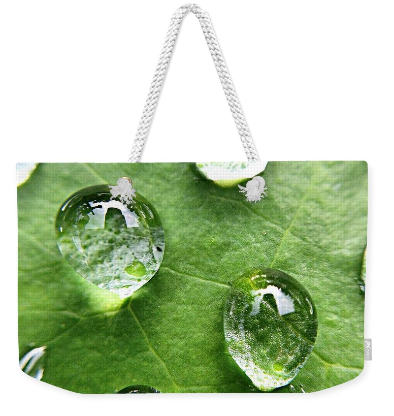 Douglasville Weekender Tote Bag featuring the photograph Close-up Of Water Drops On Leaf by Brian Harrison / Eyeem