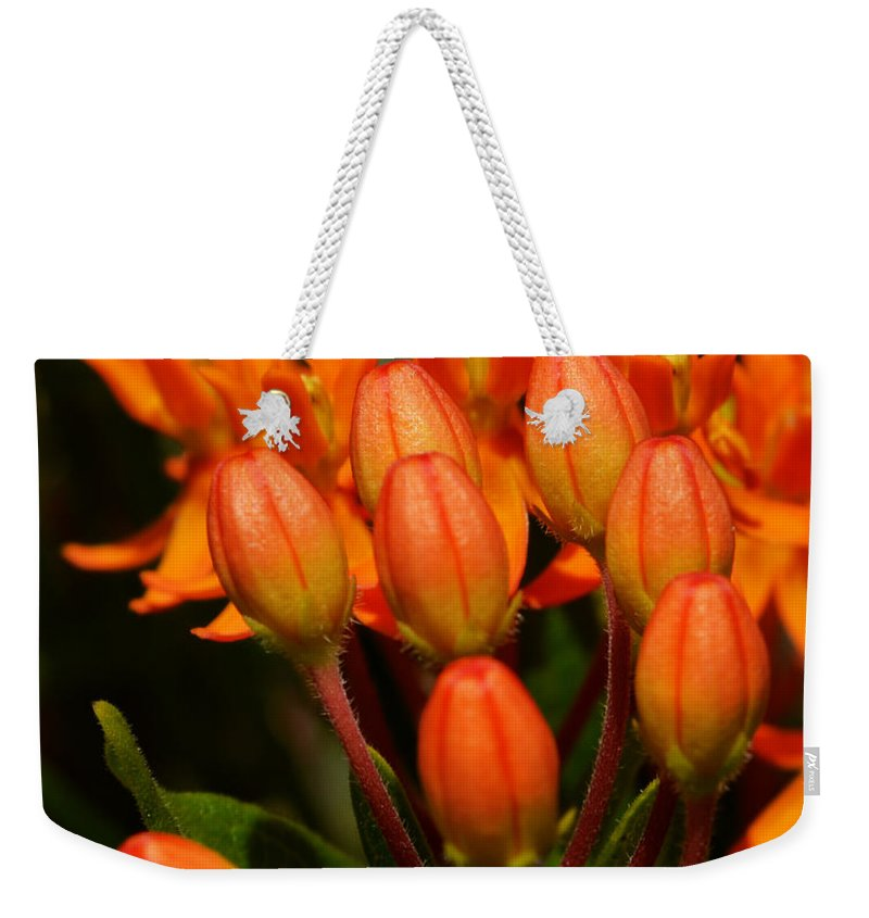Bud Weekender Tote Bag featuring the photograph Close-up Of Wildflower Buds by Lj Lambert