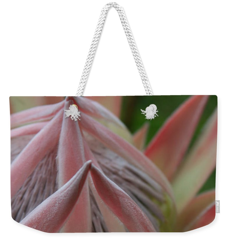 Aloha Weekender Tote Bag featuring the photograph Cloths Of Heaven by Sharon Mau