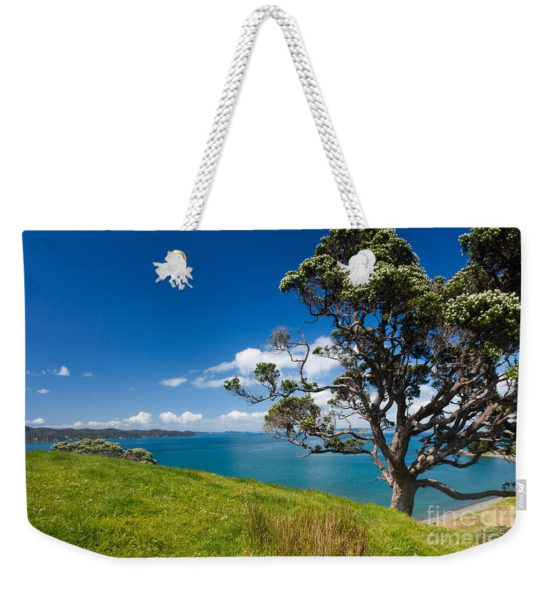 Metrosideros Excelsa Weekender Tote Bag featuring the photograph Coastal Farmland Landscape With Pohutukawa Tree by Stephan Pietzko