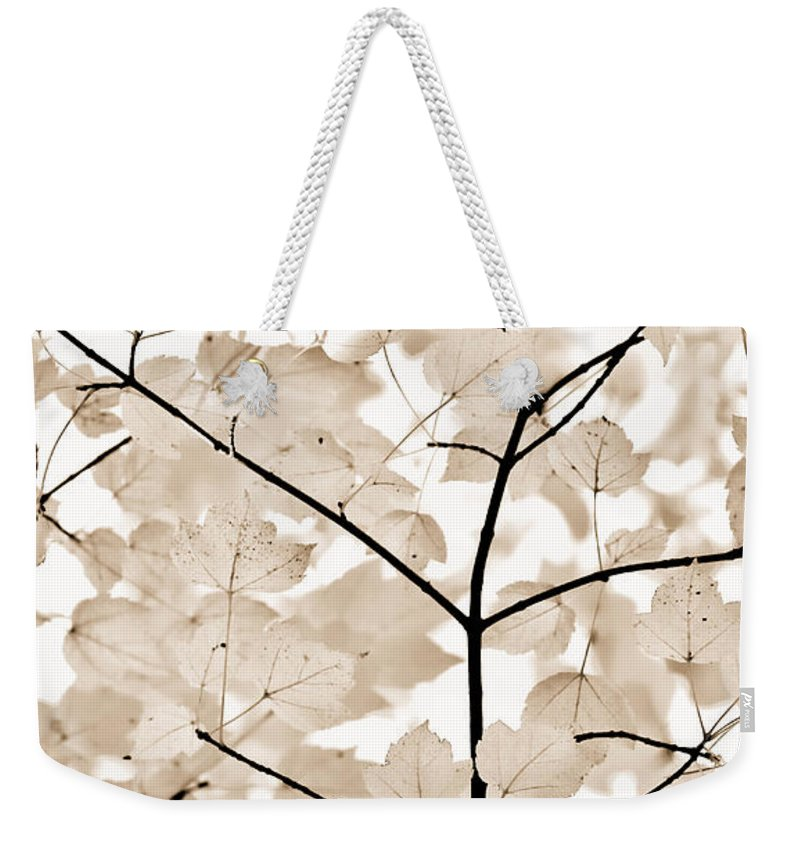 Leaf Weekender Tote Bag featuring the photograph Coffee Brown Leaves Melody by Jennie Marie Schell