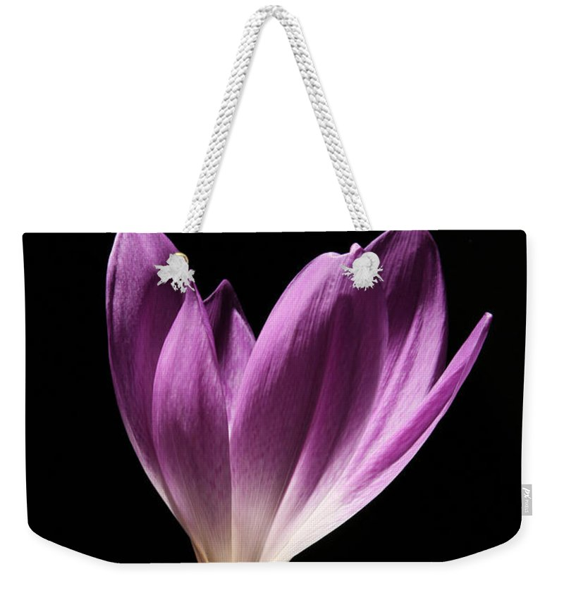 Colchicum Weekender Tote Bag featuring the photograph Colchicum #3 by Judy Whitton