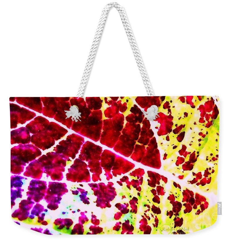 Coleus Weekender Tote Bag featuring the photograph Coleus #2 by Robert ONeil