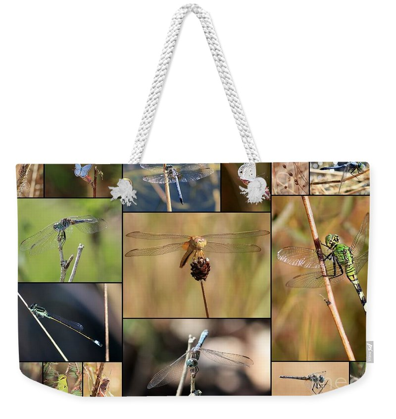 Dragonfly Weekender Tote Bag featuring the photograph Collage Marsh Life by Carol Groenen