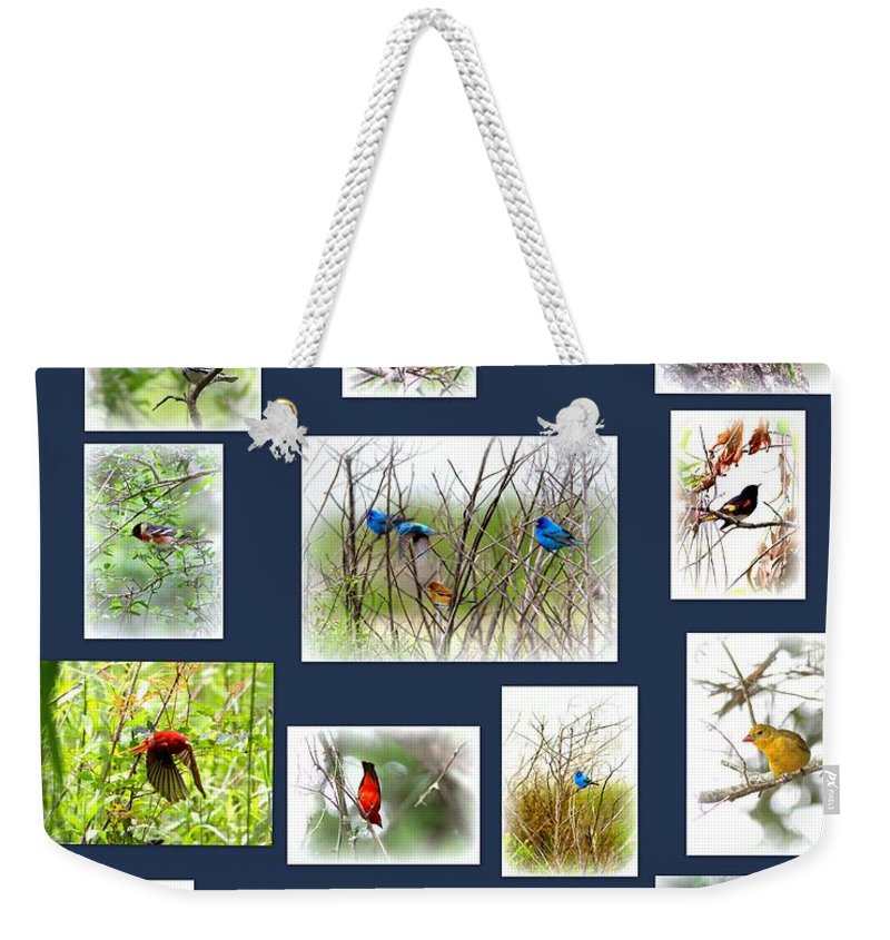 Weekender Tote Bag featuring the photograph Collage Of Indigos 6 by Travis Truelove