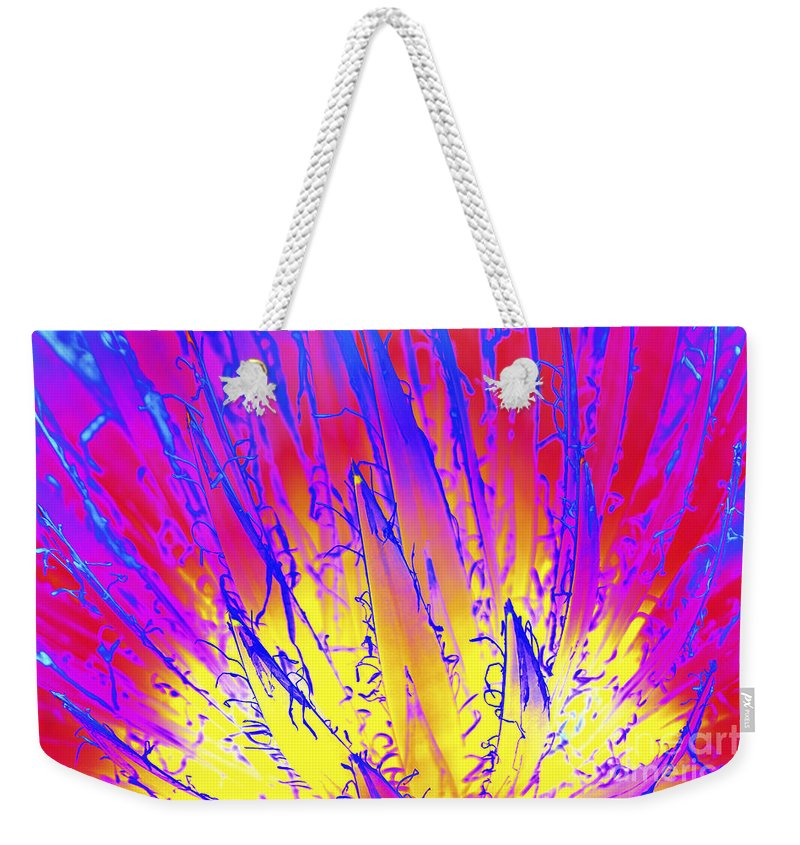 Queen Victoria's Agave Weekender Tote Bag featuring the photograph Color Burst Agave by Diane Macdonald