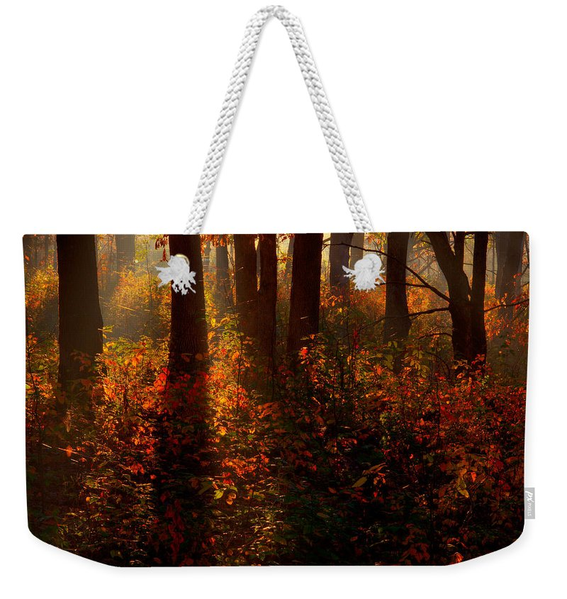 2008 Weekender Tote Bag featuring the photograph Color On The Forest Floor by Robert Charity
