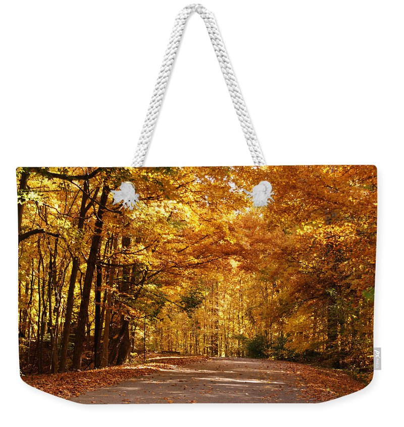 Autumn Weekender Tote Bag featuring the photograph Colorful Canopy by Sandy Keeton