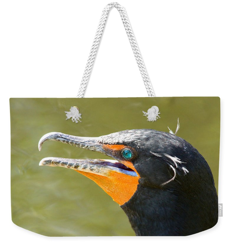 Cormorant Weekender Tote Bag featuring the photograph Colorful Double-crested Cormorant by Larry Allan