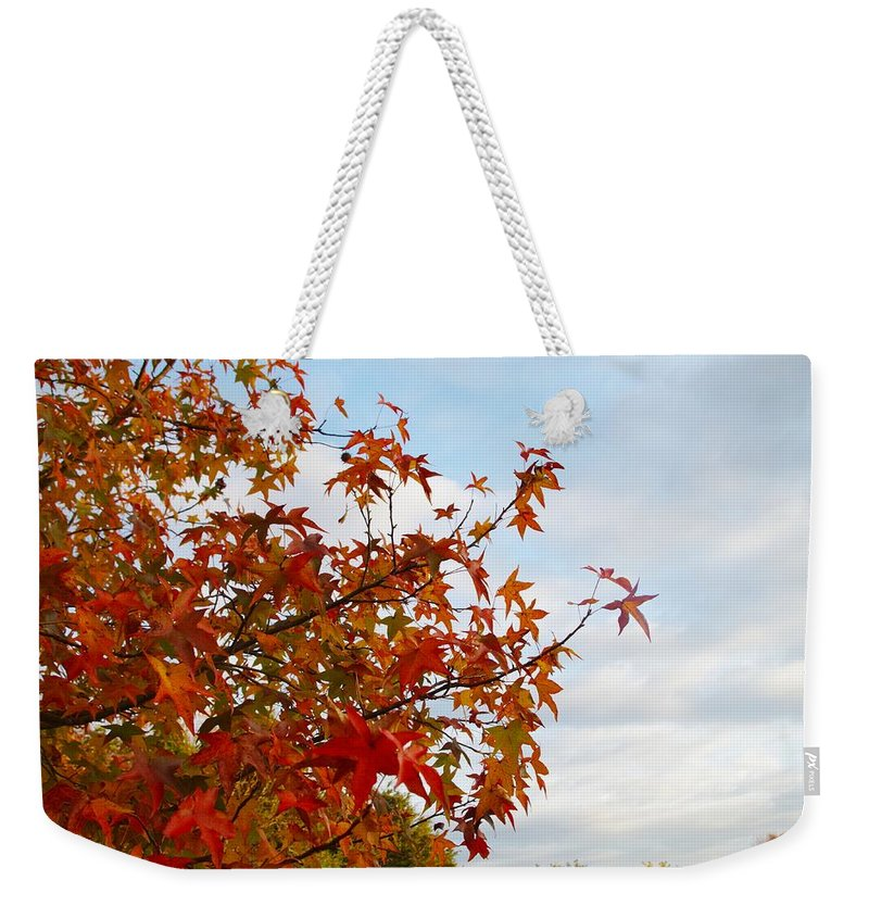 Fall Weekender Tote Bag featuring the photograph Colorful Fall Leaves by Sharon Popek