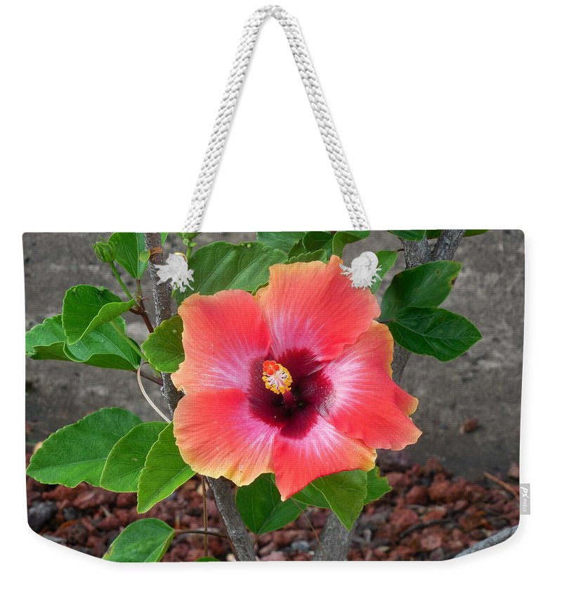 Flower Weekender Tote Bag featuring the photograph Colorful Flower by Mike Niday
