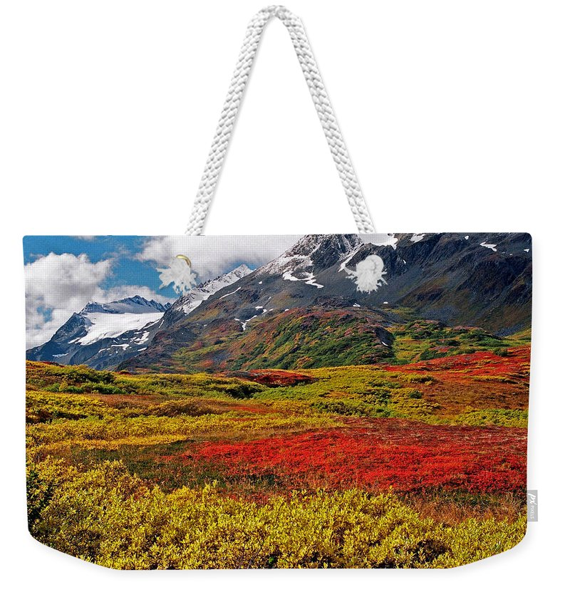 Alaska Weekender Tote Bag featuring the photograph Colorful Land - Alaska by Juergen Weiss