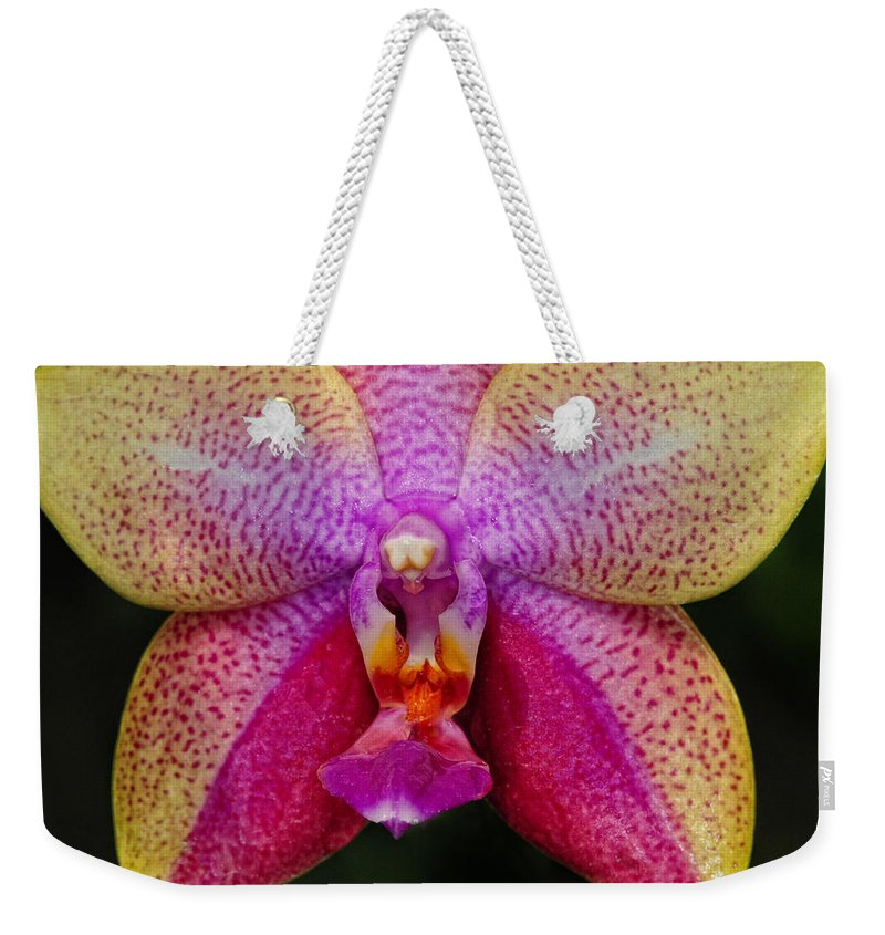 Orchid Weekender Tote Bag featuring the photograph Colorful Orchid by Dave Mills