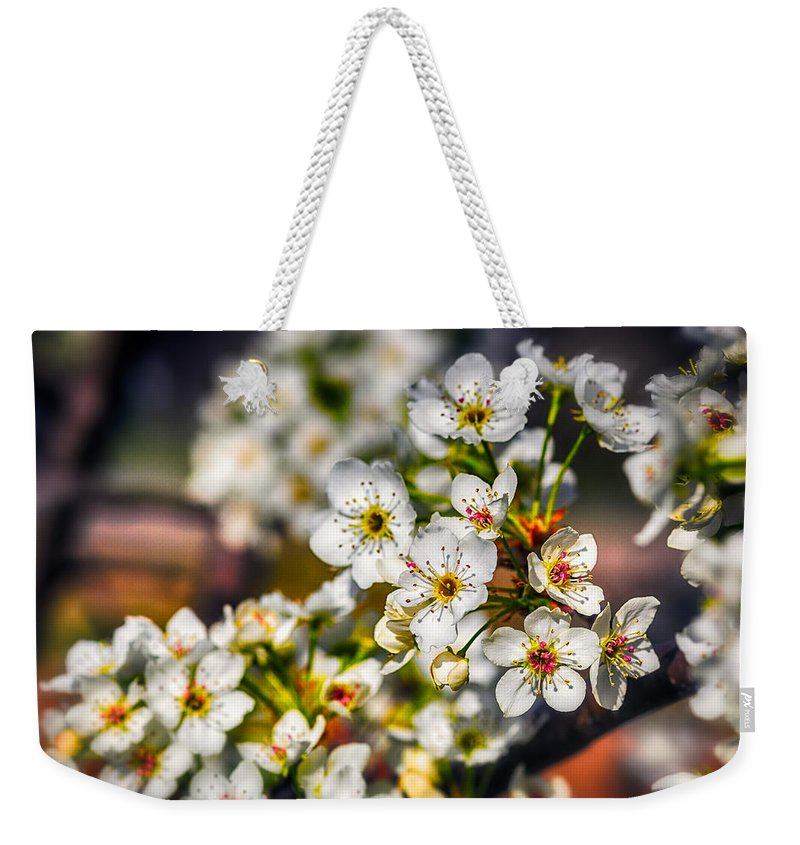 Blue Weekender Tote Bag featuring the photograph Colorful Spring by Sennie Pierson