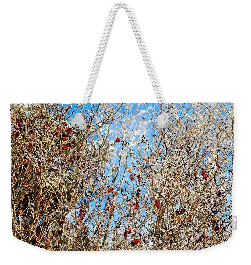 Winter Weekender Tote Bag featuring the photograph Colorful Winter Wonderland by Frozen in Time Fine Art Photography