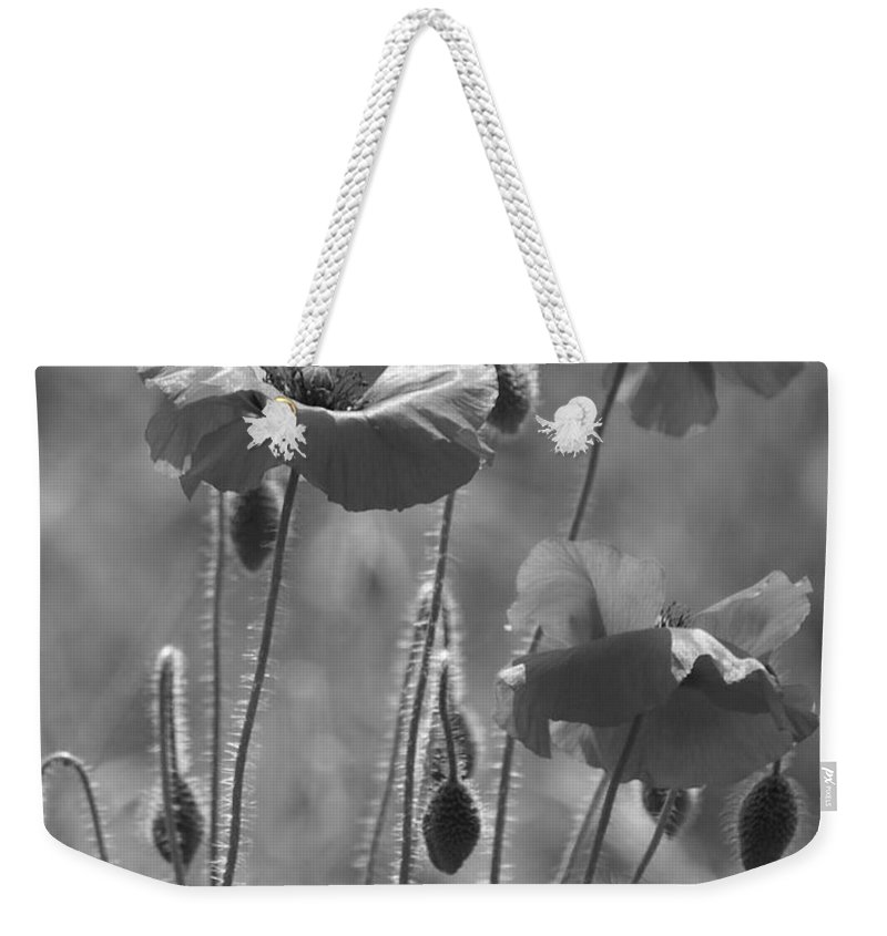 Poppies Weekender Tote Bag featuring the photograph Colour Blind Poppies 1 by Carol Lynch