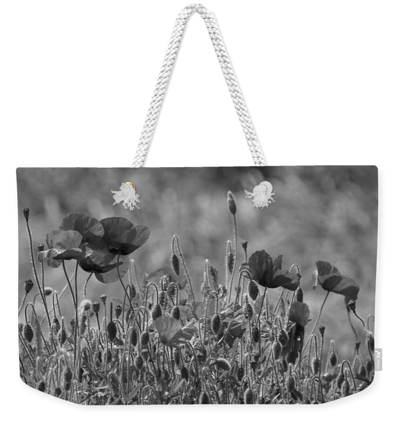 Poppies Weekender Tote Bag featuring the photograph Colour Blind Poppies 2 by Carol Lynch