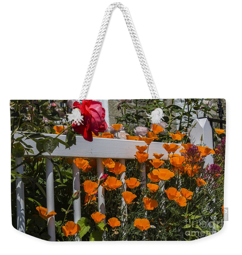 Floral Weekender Tote Bag featuring the photograph Colour Burst by Brian Roscorla