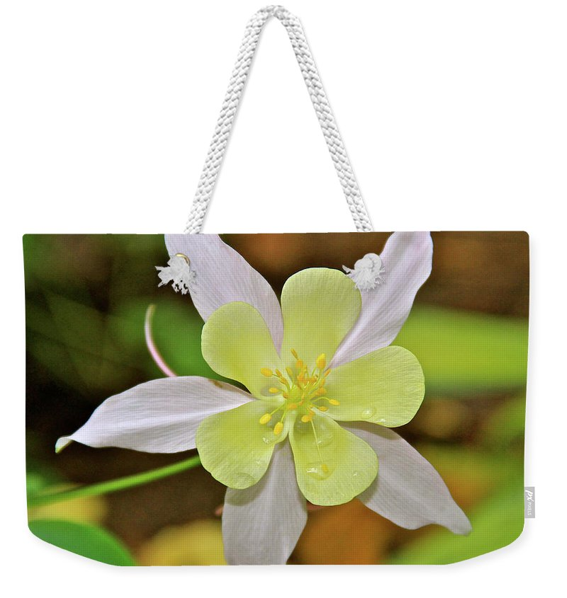 Garden Weekender Tote Bag featuring the photograph Columbine Charlie's Garden by Ed Riche