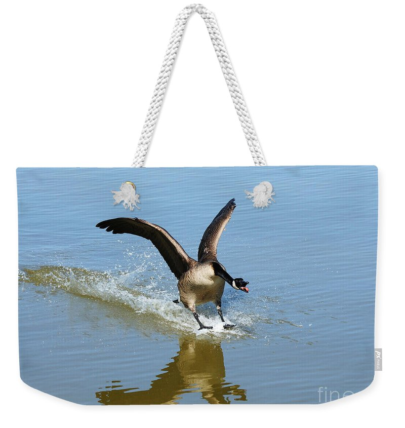 Goose Weekender Tote Bag featuring the photograph Coming In For A Landing by Vivian Christopher