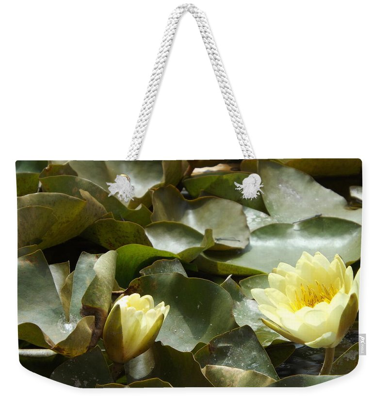 Pink Weekender Tote Bag featuring the photograph Company For Lily by Caryl J Bohn