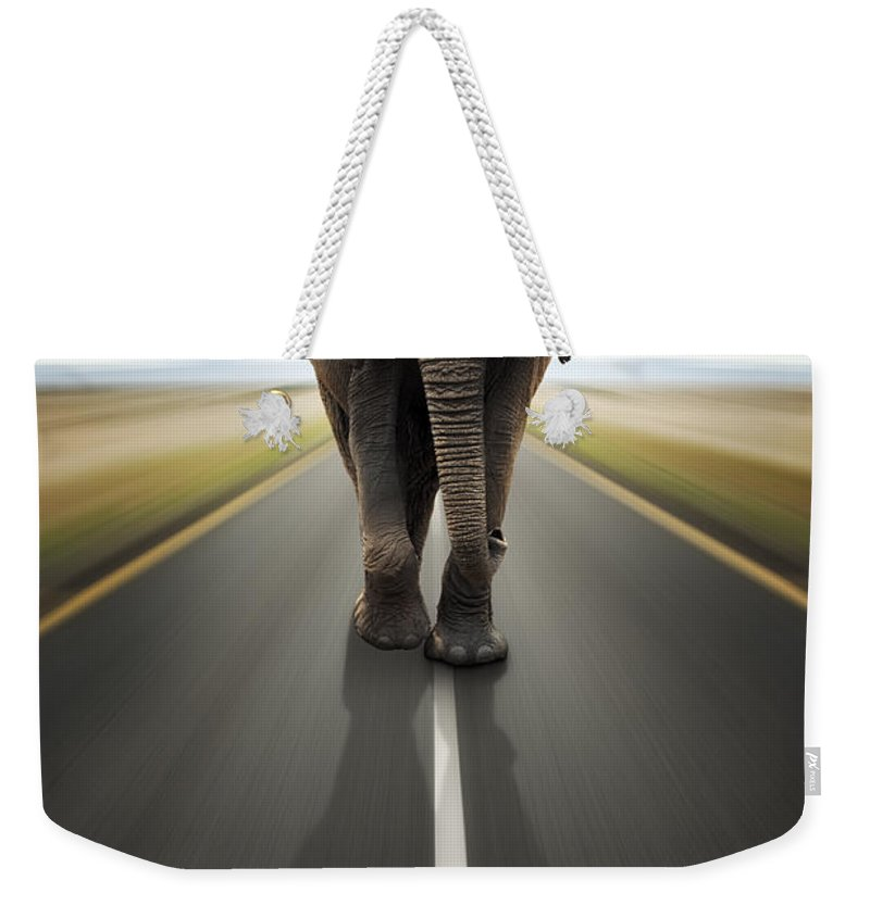 Elephant Weekender Tote Bag featuring the photograph Heavy Duty Transport / Travel By Road by Johan Swanepoel